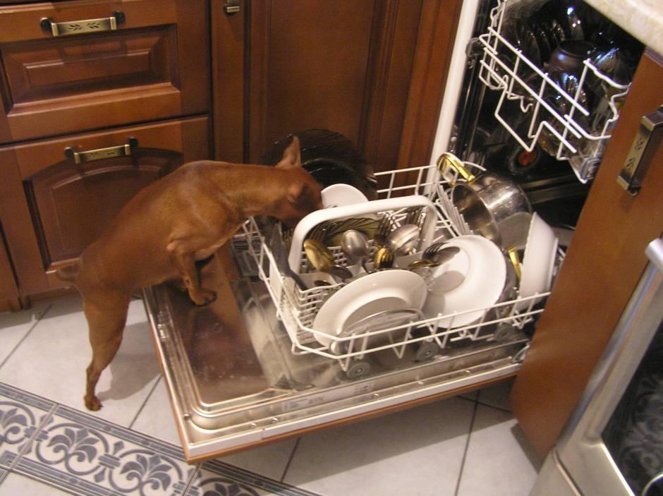 Встроенная узкая посудомоечная машина на домашней кузне